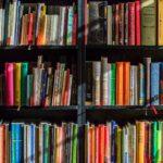 Book Marketing Spotlight: BookFrenzy Studios